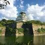 初大阪城✨✨