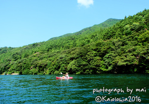 屋久島 カヤック