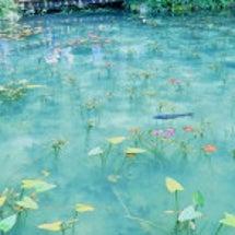 モネの池 アクセス …