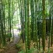 「草庵」  山の中の…