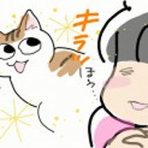 愛しの野蛮猫