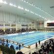 姪っ子の水泳全国大会…