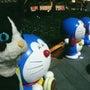 国民的ネコと熊本のハ…
