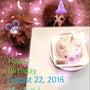 ぴーちゃんの誕生日♡