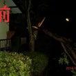 台風9号 久喜市役所…