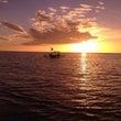 バリ島「癒しのサンセ…