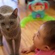 愛猫らっちゃんとぼー…