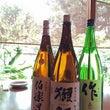 日本酒 だっさい 大…