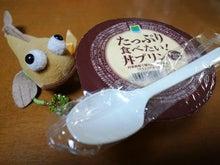 丼プリン(あまりの大きさに亀さん隠れました)
