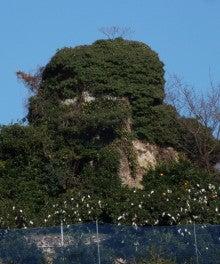 鉾岩を仰ぎ見る