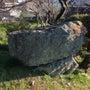 西予市の巨石信仰のド…