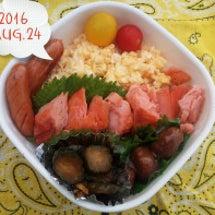 鮭弁当ときゅーちゃん