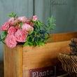小さなアトリエの花…