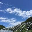 愛知県へのトレーナー…