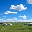 モンゴルが私の故郷な…