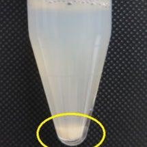 培養室から、精子に関…
