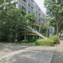 台風でペデの街路樹が…