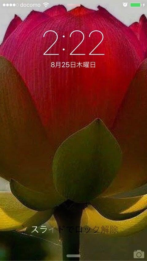 {3078E46C-B988-4203-B830-5EF1503E2F3C}