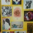 DOG dog展♪