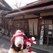 2015年2月◆奈良…