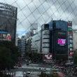 【8月旅 ❶】東京道…