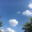 ◆お天気ですが◆