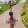 Hawaii。