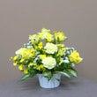 祝敬老 幸福の黄色い…