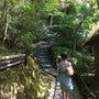 京都が好き〜好きすぎ…