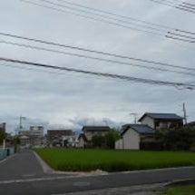 マイタウン芳泉(台風…