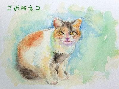 20160827ご近所ネコ絵
