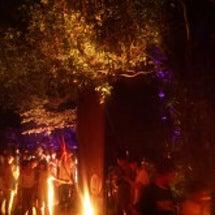 下鴨神社のライトアッ…