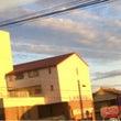 景色が金色にそまる日