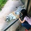 さっぽろ円山動物園