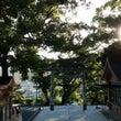 奄美大島・高千穂神社…
