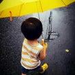 あいにくの雨が、雨ワ…