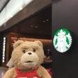 テッドと行く広島の旅
