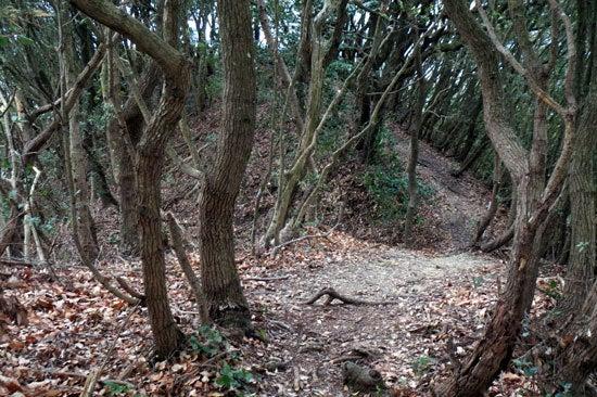 【写25】小笠山砦