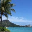 2か月ぶりの<ハワイ…