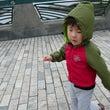先日の日曜日、新江ノ…