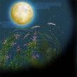 9月の星の動き