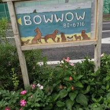 BOWWOW茅ヶ崎店…