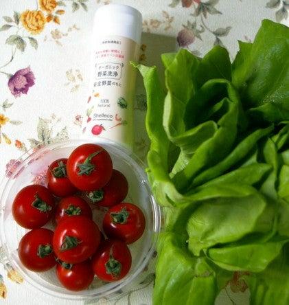 3 トマト・サラダ菜・洗浄剤