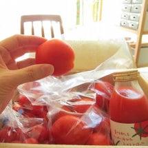 トマトの香り。安曇野…