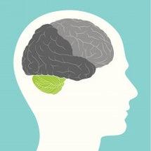 小脳と運動