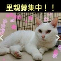 """""""☆SOS! 北海道…"""