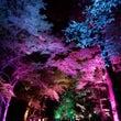 京都の幻想的空間へ