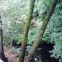 猪ノ倉温泉にて夏休み…