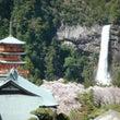 来年のNHK和歌山の…