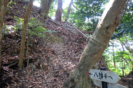 【写10】八幡平の城